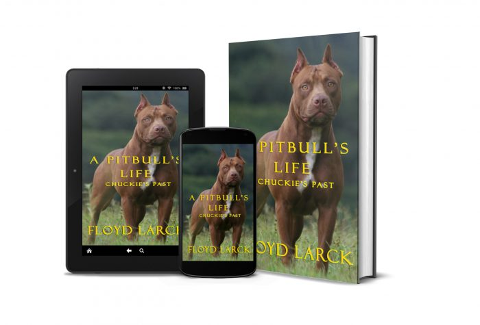A Pit Bull's Life - Chuckie's Past