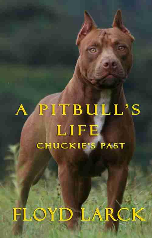 A Pitbull's Life – Chuckie's Past