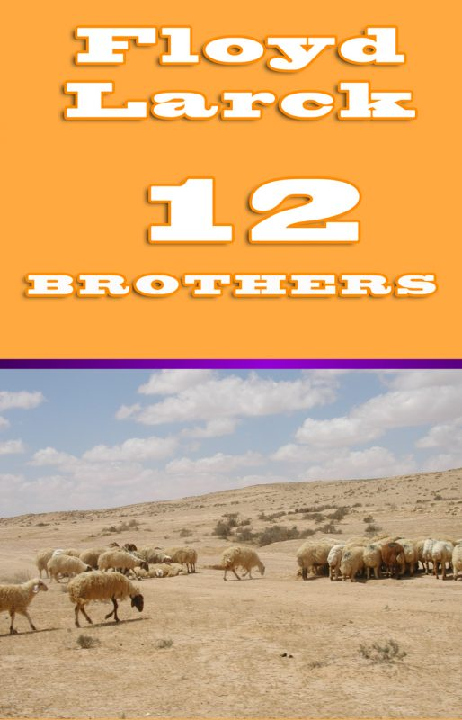 12 Brothers