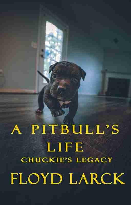 A Pitbull's Life – Chuckie's Legacy